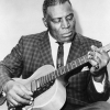 A fan of Howlin' Wolf matches 34% with Harley Benton BigTone Vintage Orange or a relevant item