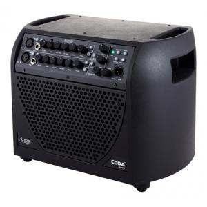Is Acoustic Image Coda 4 611-AA-2 B-Stock a good match for you?