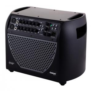 Is Acoustic Image Corus S4 612-GA-plus B-Stock a good match for you?