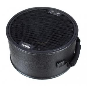 Is Acoustic Image UpShot S4plus Speaker Cabinet a good match for you?