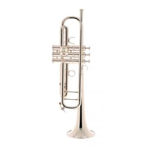 """Take the """"IS IT GOOD FOR ME"""" test for """"Adams A2 Bb- Trumpet 050 Selected SP"""", read the reviews and join the community!"""