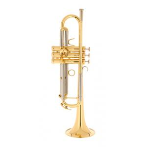 """Take the """"IS IT GOOD FOR ME"""" test for """"Adams Prologue L Bb- Trumpet"""", read the reviews and join the community!"""