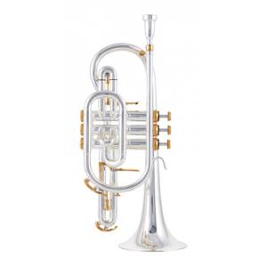 "Take the ""IS IT GOOD FOR ME"" test for ""B&S 3141/2N-S Cornet Perinet"", read the reviews and join the community!"