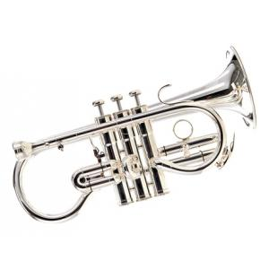 """Take the """"IS IT GOOD FOR ME"""" test for """"Besson BE924-2 Sovereign Eb-Cornet"""", read the reviews and join the community!"""