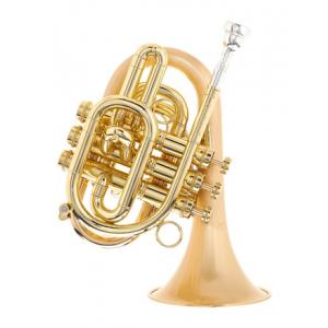 Is Carol Brass CPT-7000-GLS-Bb-SLB a good match for you?