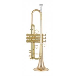Is Carol Brass CTR-8060H-GLS-Bb-L a good match for you?