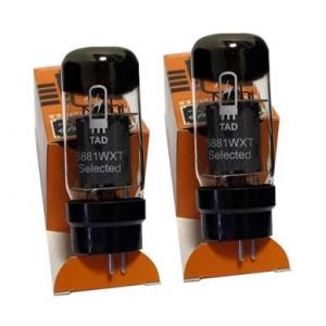 Is Engl Tube 5881 WXT Pair GR13 a good match for you?