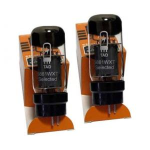 Is Engl Tube 5881 WXT Pair GR19 a good match for you?
