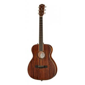 Is Fender PM-TE All Mahogany Natural a good match for you?