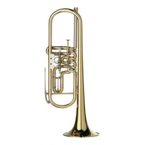 "Take the ""IS IT GOOD FOR ME"" test for ""Gerd Dowids BZ Series GL 72 Bb-Trumpet"", read the reviews and join the community!"