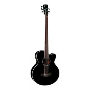 Is Harley Benton B-35BK-FL Acoustic Bass Series a good match for you?