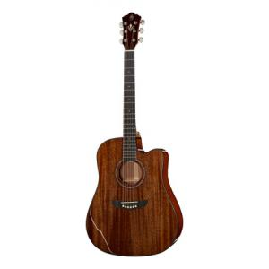 Is Harley Benton CLD-40SM-CE SolidWood a good match for you?