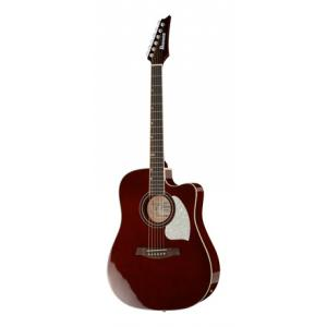 Is Ibanez LE300-DBB a good match for you?