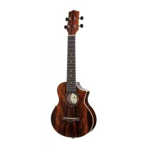 Is Ibanez UEW13MEE-DBO a good match for you?