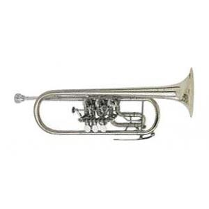 Is Johannes Scherzer 8217-S C-Trumpet a good match for you?