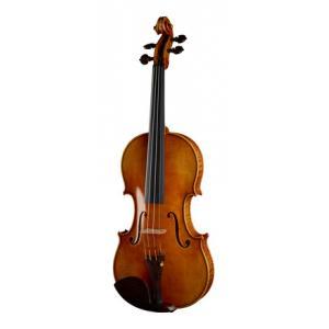 Is Klaus Heffler Infinity Master Violin 4/4 a good match for you?