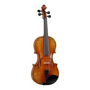 Is Klaus Heffler No. 6/0L SE Lefth. Violin 4/4 a good match for you?