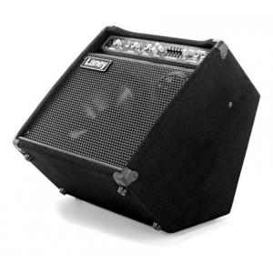 Is Laney AH80 B-Stock a good match for you?