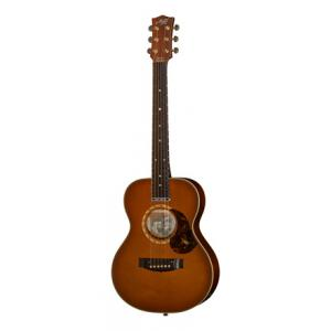 Is Maton EMD/6 Diesel Signature /w Case a good match for you?