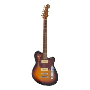 """Take the """"IS IT GOOD FOR ME"""" test for """"Reverend Charger 290 SB B-Stock"""", read the reviews and join the community!"""