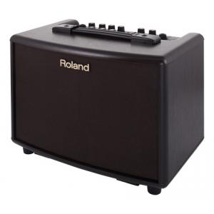 "Take the ""IS IT GOOD FOR ME"" test for ""Roland AC-33 RW"", read the reviews and join the community!"