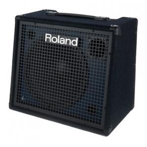 """Take the """"IS IT GOOD FOR ME"""" test for """"Roland KC-200"""", read the reviews and join the community!"""