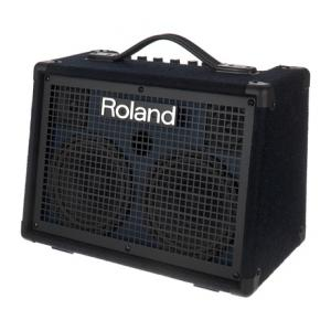"""Take the """"IS IT GOOD FOR ME"""" test for """"Roland KC-220 B-Stock"""", read the reviews and join the community!"""