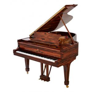 """Take the """"IS IT GOOD FOR ME"""" test for """"Steinway & Sons A-188 Makassar"""", read the reviews and join the community!"""