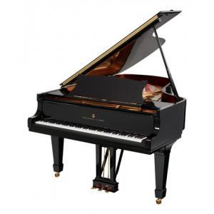 Ist Steinway & Sons B-211 die richtige Musik Ausrüstung für Sie? Finden Sie heraus!