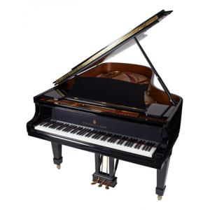 """Take the """"IS IT GOOD FOR ME"""" test for """"Steinway & Sons B-211"""", read the reviews and join the community!"""