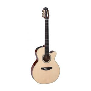 Is Takamine CNC-WS3 a good match for you?
