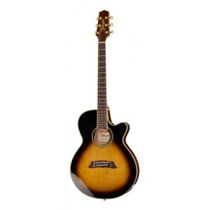 Is Takamine TSP138CTBS Thinline a good match for you?