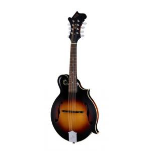 Is The Loar LM-370-VSM a good match for you?
