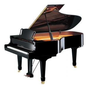 """Take the """"IS IT GOOD FOR ME"""" test for """"Yamaha C-6 XA PE Grand Piano"""", read the reviews and join the community!"""